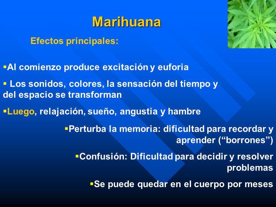 MARIHUANA n Contiene mas de 60 cannabinoides. n Contiene mas de 400 otras sustancias que también son aspiradas n Contiene un mayor porcentaje de cance
