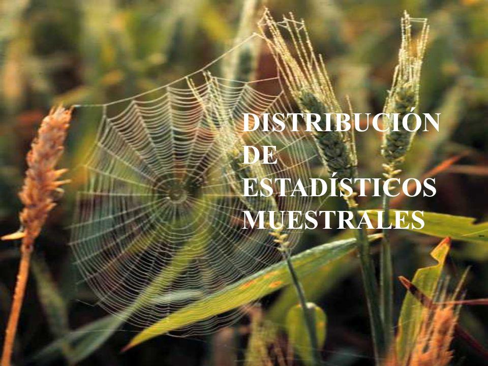 Distribución del estadístico media muestral MuestraPlantasNro.