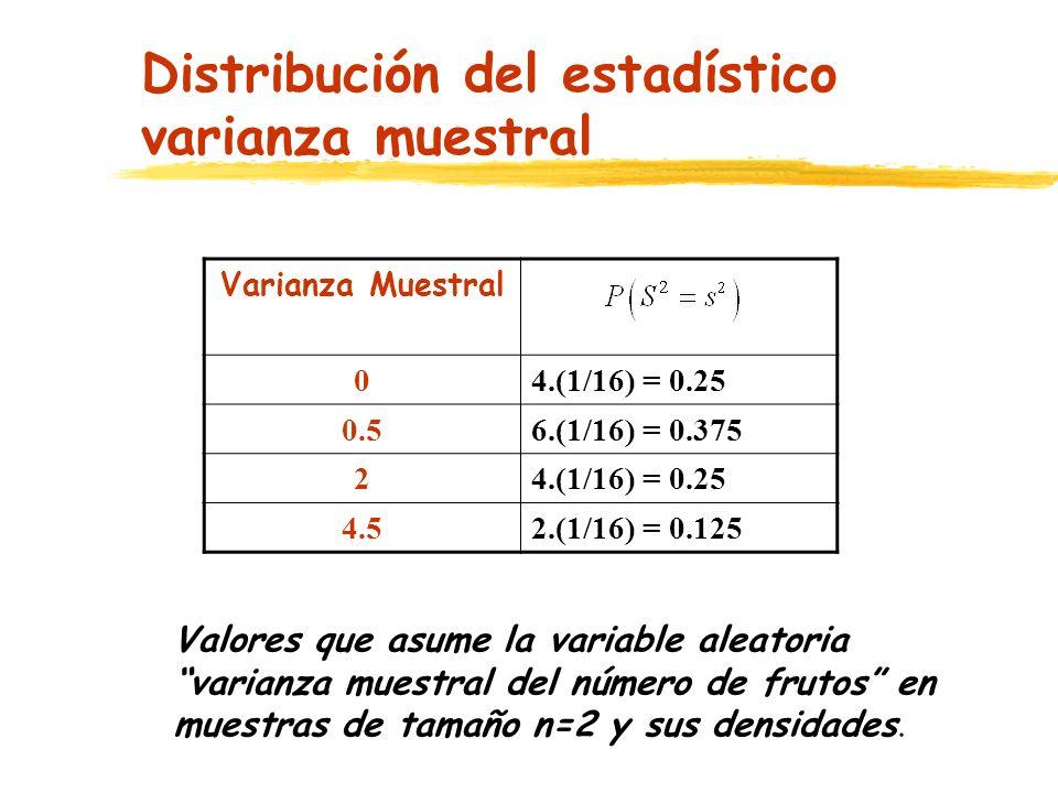 Distribución del estadístico varianza muestral Valores que asume la variable aleatoria varianza muestral del número de frutos en muestras de tamaño n=