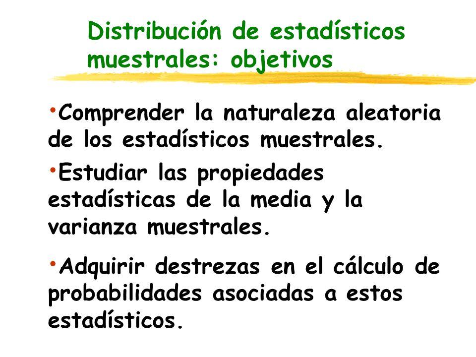 Distribución del estadístico media muestral Error Estándar