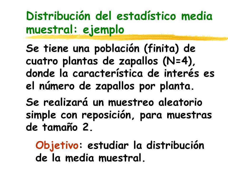 Distribución del estadístico media muestral PlantaX = Nº de frutos f(x i ) P1P1 31/4 P2P2 2 P3P3 1 P4P4 4 Función de densidad del número de frutos en una población de 4 plantas de zapallo.