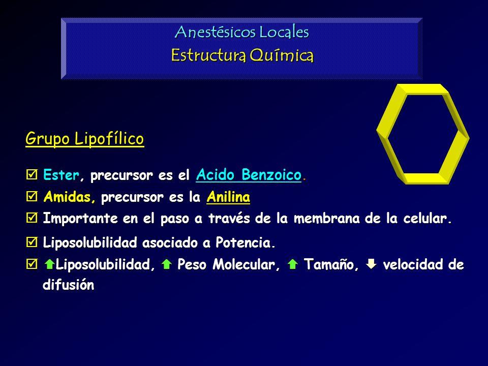 Grupo Lipofílico Ester, precursor es el Acido Benzoico. Ester, precursor es el Acido Benzoico. Amidas, precursor es la Anilina Amidas, precursor es la