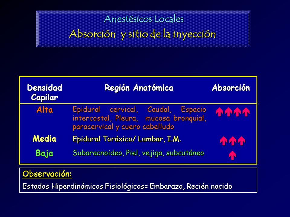 Anestésicos Locales Absorción y sitio de la inyección Subaracnoideo, Piel, vejiga, subcutáneo Epidural Toráxico/ Lumbar, I.M. Epidural cervical, Cauda