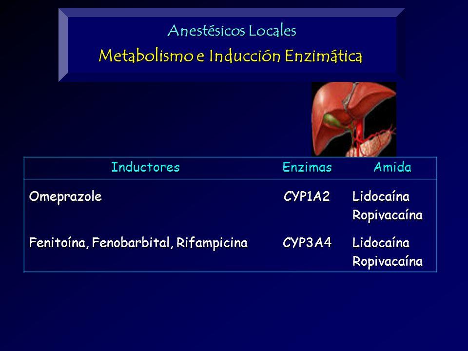 Anestésicos Locales Metabolismo e Inducción Enzimática InductoresEnzimasAmidaOmeprazoleCYP1A2LidocaínaRopivacaína Fenitoína, Fenobarbital, Rifampicina