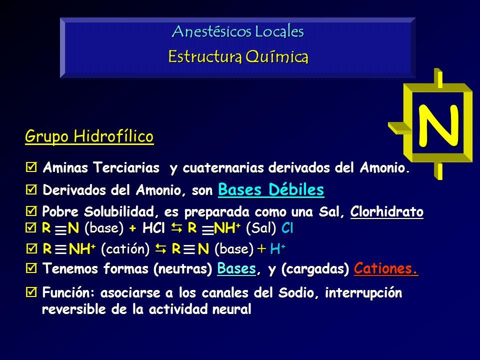 Estructura Química Grupo Hidrofílico Aminas Terciarias y cuaternarias derivados del Amonio. Aminas Terciarias y cuaternarias derivados del Amonio. Der