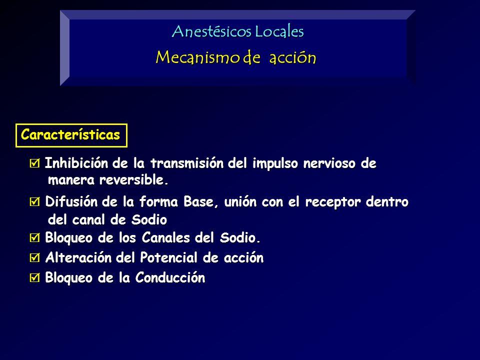 Anestésicos Locales Inhibición de la transmisión del impulso nervioso de Inhibición de la transmisión del impulso nervioso de manera reversible. maner