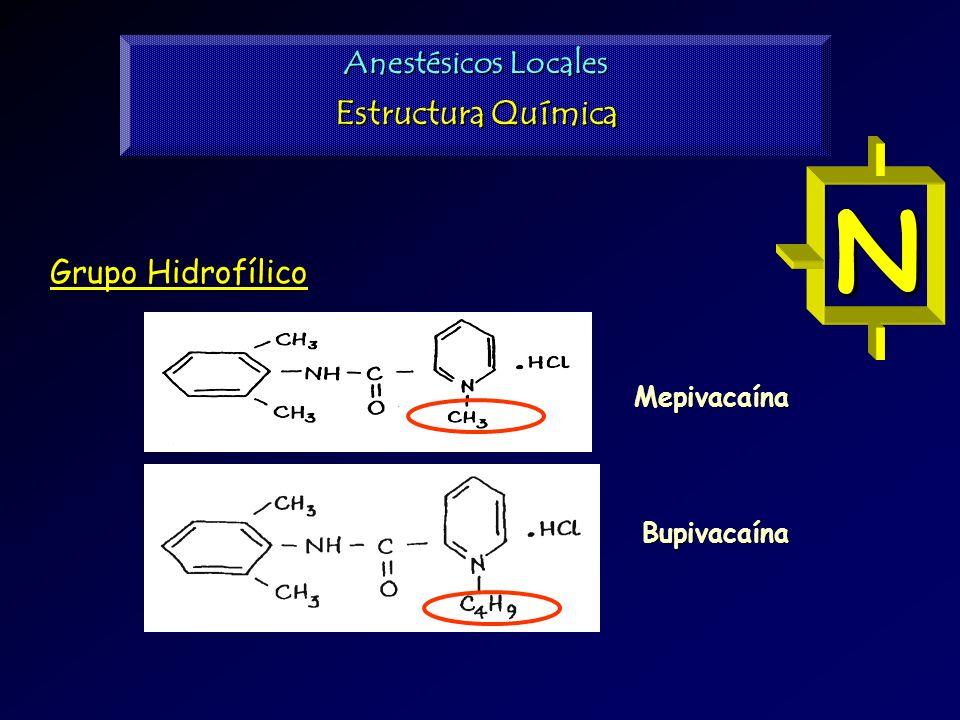 Grupo Hidrofílico N Bupivacaína Mepivacaína N Anestésicos Locales Estructura Química