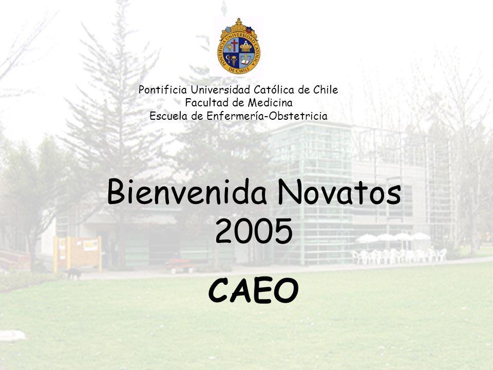 Pontificia Universidad Católica de Chile Facultad de Medicina Escuela de Enfermería-Obstetricia Bienvenida Novatos 2005 CAEO