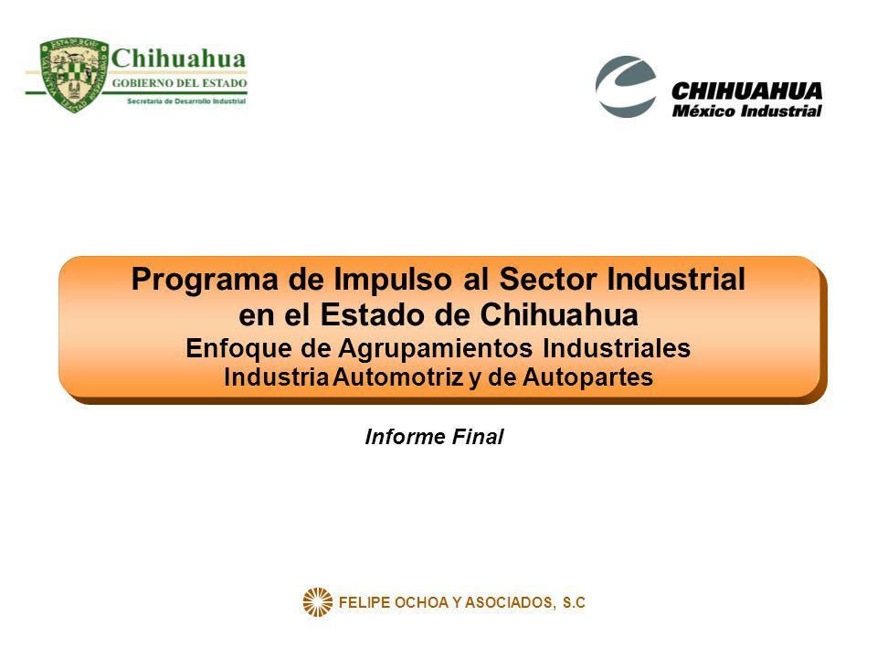 FELIPE OCHOA Y ASOCIADOS, S.C Programa de Impulso al Sector Industrial en el Estado de Chihuahua Enfoque de Agrupamientos Industriales Industria Autom
