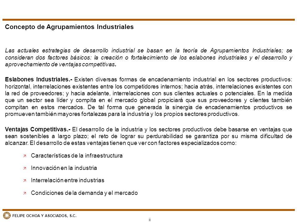 FELIPE OCHOA Y ASOCIADOS, S.C. Concepto de Agrupamientos Industriales Las actuales estrategias de desarrollo industrial se basan en la teoría de Agrup