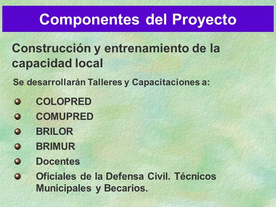 Construcción y entrenamiento de la capacidad local Componentes del Proyecto COLOPRED COMUPRED BRILOR BRIMUR Docentes Oficiales de la Defensa Civil.
