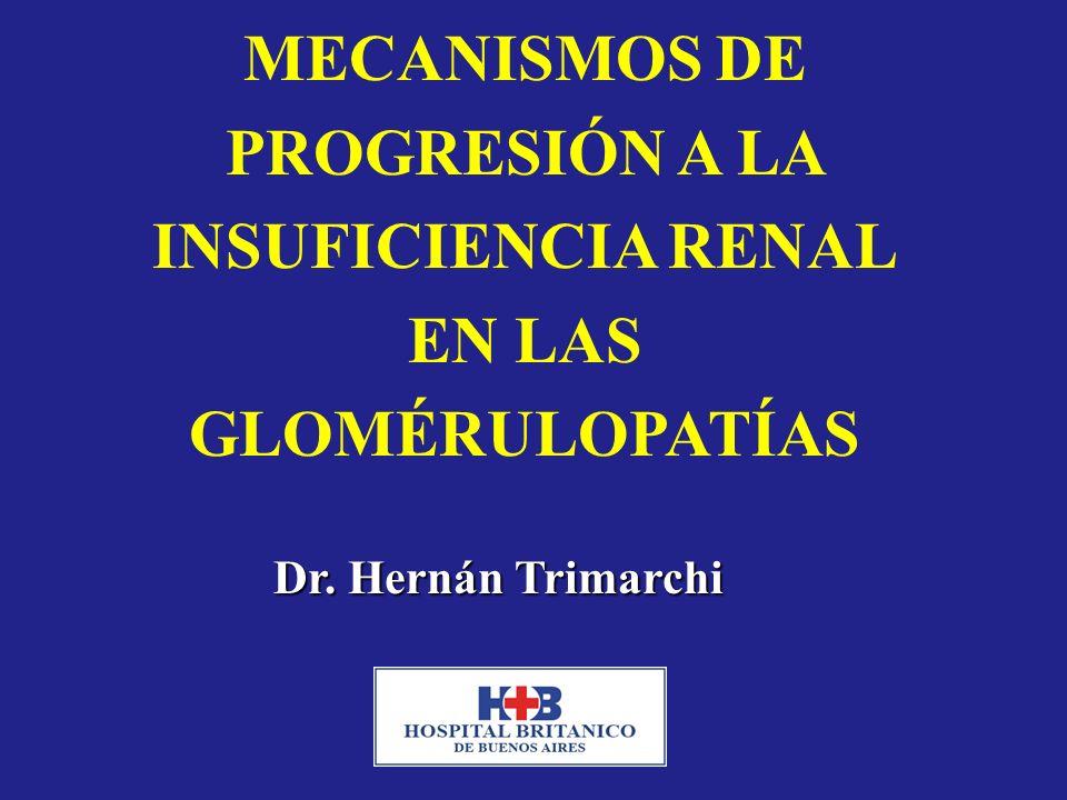 MECANISMOS DE PROGRESIÓN A LA INSUFICIENCIA RENAL EN LAS GLOMÉRULOPATÍAS Dr. Hernán Trimarchi
