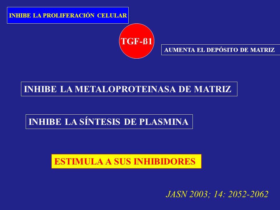 TGF-ß1 INHIBE LA PROLIFERACIÓN CELULAR AUMENTA EL DEPÓSITO DE MATRIZ INHIBE LA METALOPROTEINASA DE MATRIZ INHIBE LA SÍNTESIS DE PLASMINA ESTIMULA A SU