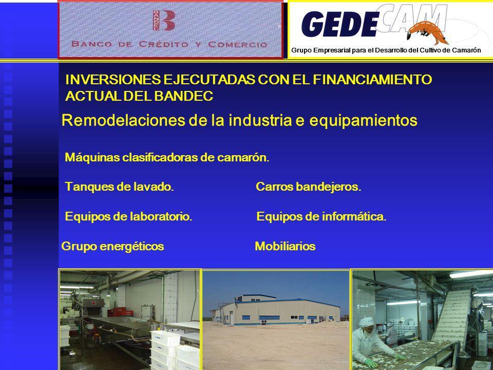 INVERSIONES EJECUTADAS CON EL FINANCIAMIENTO ACTUAL DEL BANDEC Remodelaciones de la industria e equipamientos Máquinas clasificadoras de camarón. Tanq
