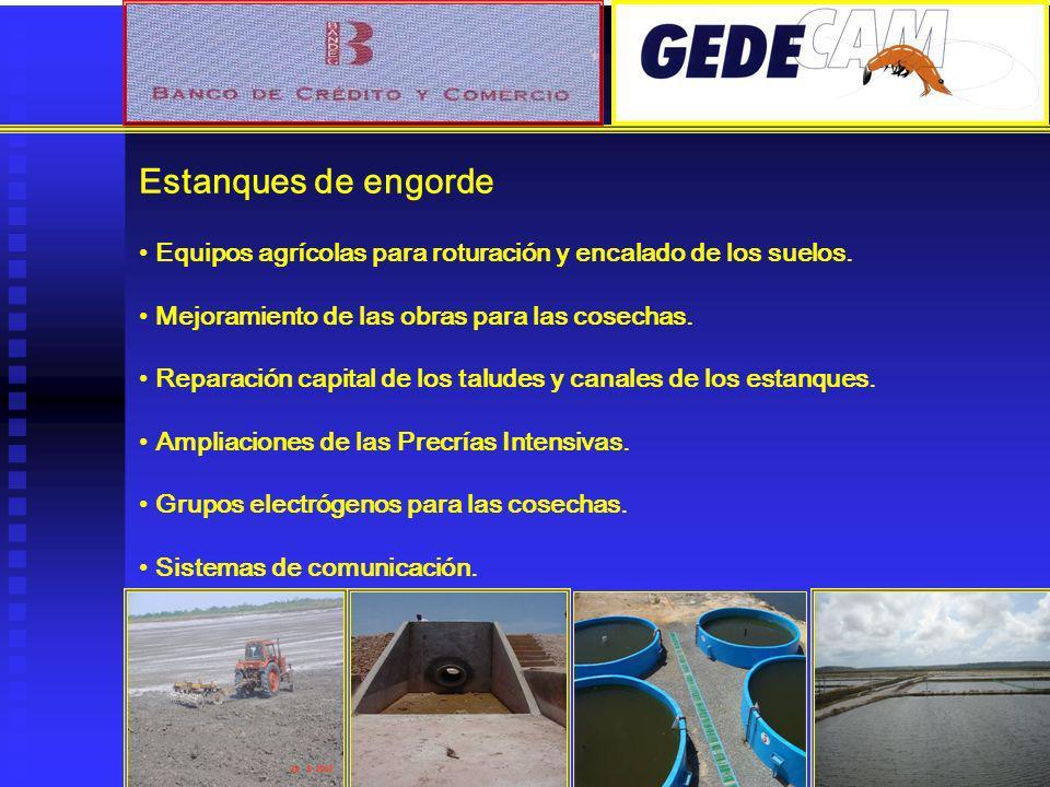 Estanques de engorde Equipos agrícolas para roturación y encalado de los suelos. Mejoramiento de las obras para las cosechas. Reparación capital de lo