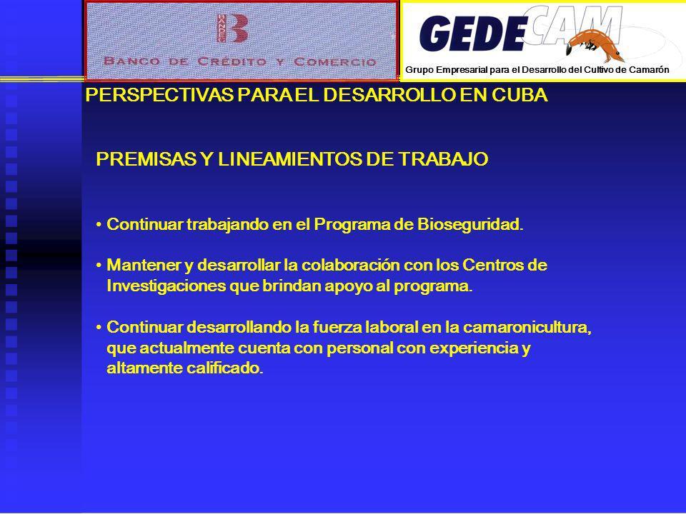 PERSPECTIVAS PARA EL DESARROLLO EN CUBA PREMISAS Y LINEAMIENTOS DE TRABAJO Continuar trabajando en el Programa de Bioseguridad. Mantener y desarrollar