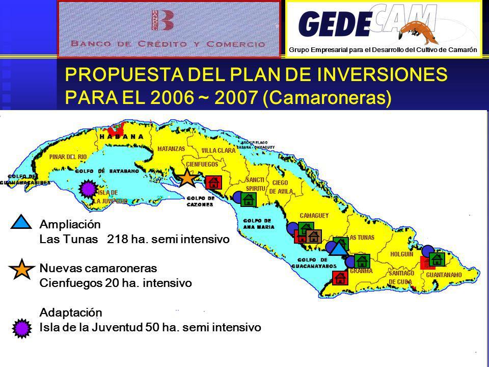 PROPUESTA DEL PLAN DE INVERSIONES PARA EL 2006 ~ 2007 (Camaroneras) Ampliación Las Tunas 218 ha. semi intensivo Nuevas camaroneras Cienfuegos 20 ha. i