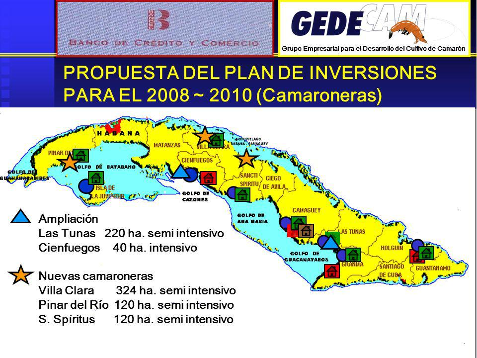 PROPUESTA DEL PLAN DE INVERSIONES PARA EL 2008 ~ 2010 (Camaroneras) Ampliación Las Tunas 220 ha. semi intensivo Cienfuegos 40 ha. intensivo Nuevas cam