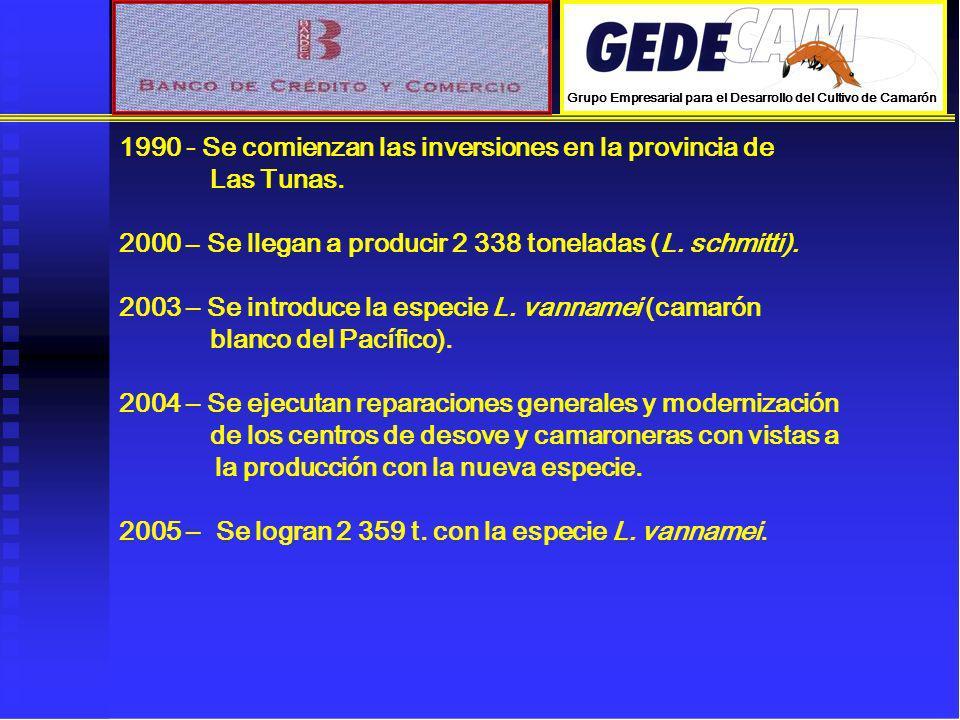 1990 - Se comienzan las inversiones en la provincia de Las Tunas. 2000 – Se llegan a producir 2 338 toneladas (L. schmitti). 2003 – Se introduce la es
