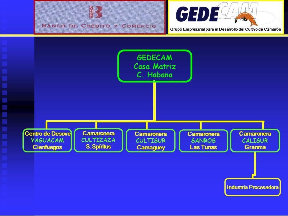 PROPUESTA DEL PLAN DE INVERSIONES PARA EL 2008 ~ 2010 (Camaroneras) Ampliación Las Tunas 220 ha.