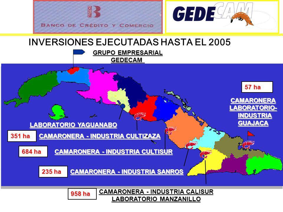 INVERSIONES EJECUTADAS HASTA EL 2005 CAMARONERALABORATORIO- INDUSTRIA INDUSTRIAGUAJACA CAMARONERA - INDUSTRIA CULTIZAZA 351 ha CAMARONERA - INDUSTRIA