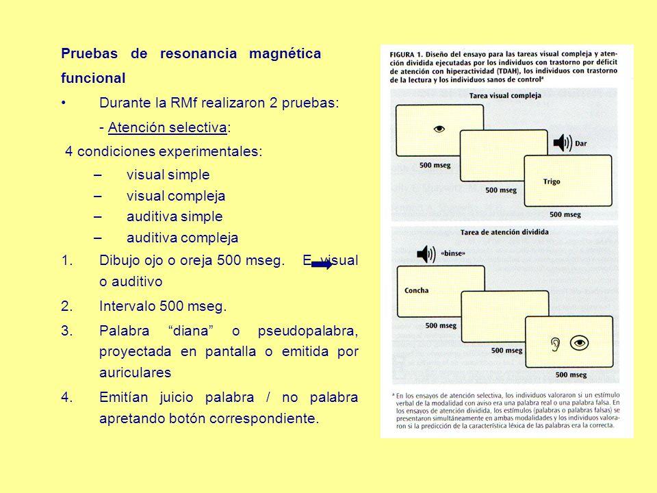 Pruebas de resonancia magnética funcional Durante la RMf realizaron 2 pruebas: - Atención selectiva: 4 condiciones experimentales: –visual simple –vis