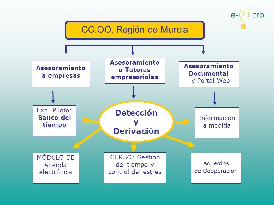 CC.OO. Región de Murcia Asesoramiento a empresas Asesoramiento a Tutoras empresariales Asesoramiento Documental y Portal Web Detección y Derivación MÓ