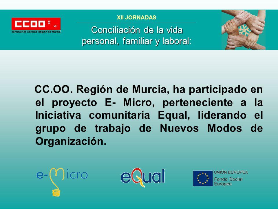 CC.OO. Región de Murcia, ha participado en el proyecto E- Micro, perteneciente a la Iniciativa comunitaria Equal, liderando el grupo de trabajo de Nue
