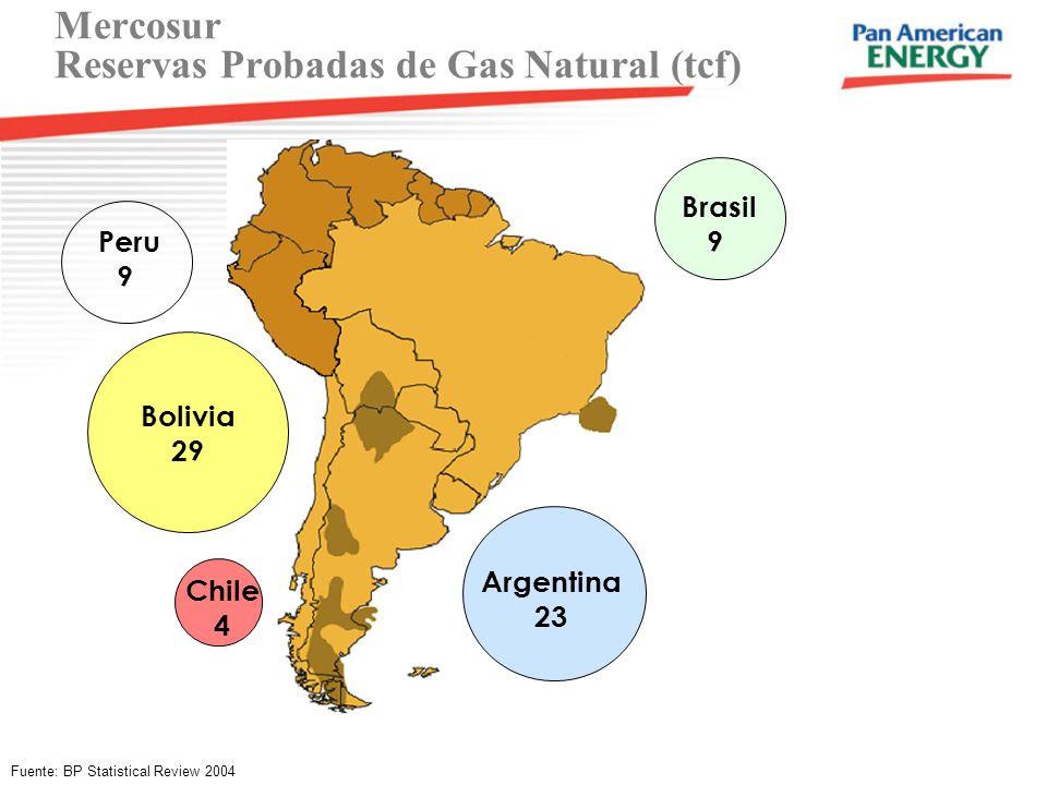 Mercosur Reservas Probadas de Gas Natural (tcf) Fuente: BP Statistical Review 2004 Chile 4 Brasil 9 Argentina 23 Bolivia 29 Peru 9