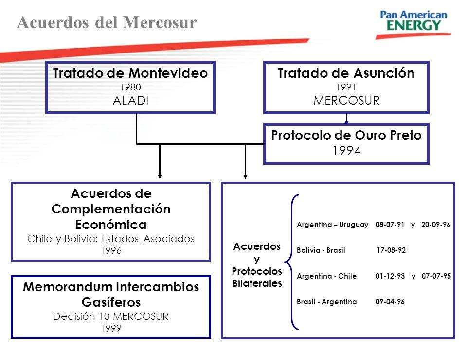 Acuerdos del Mercosur Tratado de Montevideo 1980 ALADI Tratado de Asunción 1991 MERCOSUR Protocolo de Ouro Preto 1994 Acuerdos de Complementación Económica Chile y Bolivia: Estados Asociados 1996 Memorandum Intercambios Gasíferos Decisión 10 MERCOSUR 1999 Argentina – Uruguay 08-07-91 y 20-09-96 Bolivia - Brasil 17-08-92 Argentina - Chile 01-12-93 y 07-07-95 Brasil - Argentina 09-04-96 Acuerdos y Protocolos Bilaterales