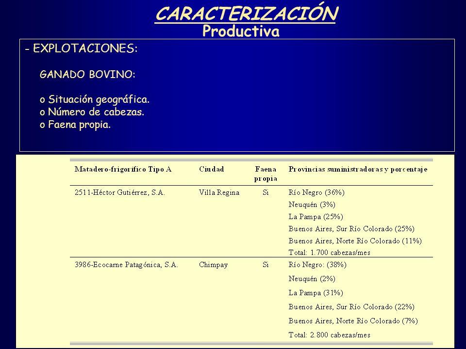 CARACTERIZACIÓN Productiva - EXPLOTACIONES: GANADO BOVINO: o Situación geográfica. o Número de cabezas. o Faena propia.