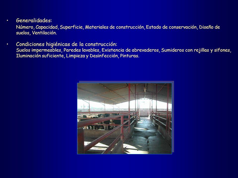 Generalidades: Número, Capacidad, Superficie, Materiales de construcción, Estado de conservación, Diseño de suelos, Ventilación. Condiciones higiénica