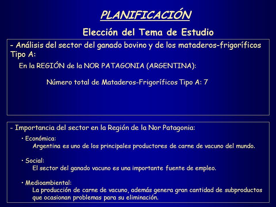 PLANIFICACIÓN Recopilación de Información Revisión bibliográfica.