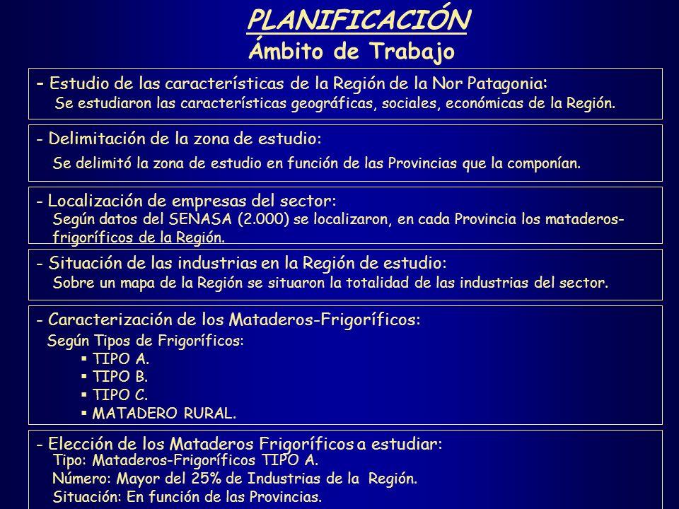 PLANIFICACIÓN Ámbito de Trabajo - Estudio de las características de la Región de la Nor Patagonia : - Delimitación de la zona de estudio: Se estudiaro
