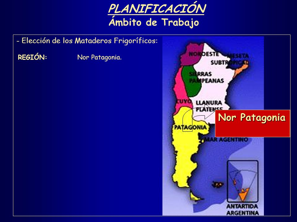 PLANIFICACIÓN Ámbito de Trabajo - Elección de los Mataderos Frigoríficos: REGIÓN: Nor Patagonia.
