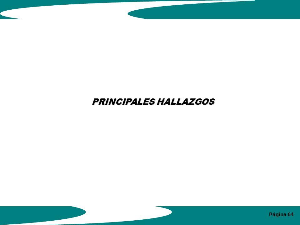 Página 64 PRINCIPALES HALLAZGOS