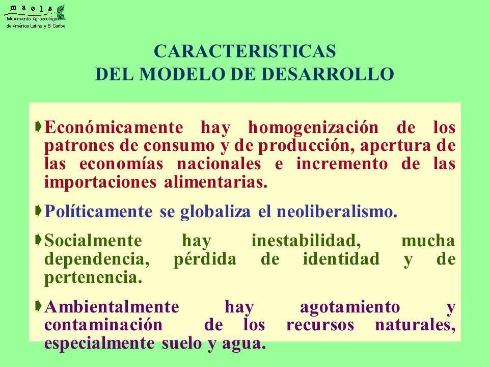 CARACTERISTICAS DEL MODELO DE DESARROLLO Económicamente hay homogenización de los patrones de consumo y de producción, apertura de las economías nacio