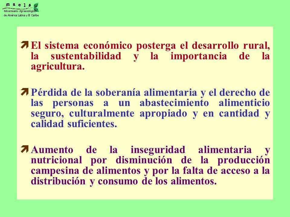 El sistema económico posterga el desarrollo rural, la sustentabilidad y la importancia de la agricultura. Pérdida de la soberanía alimentaria y el der