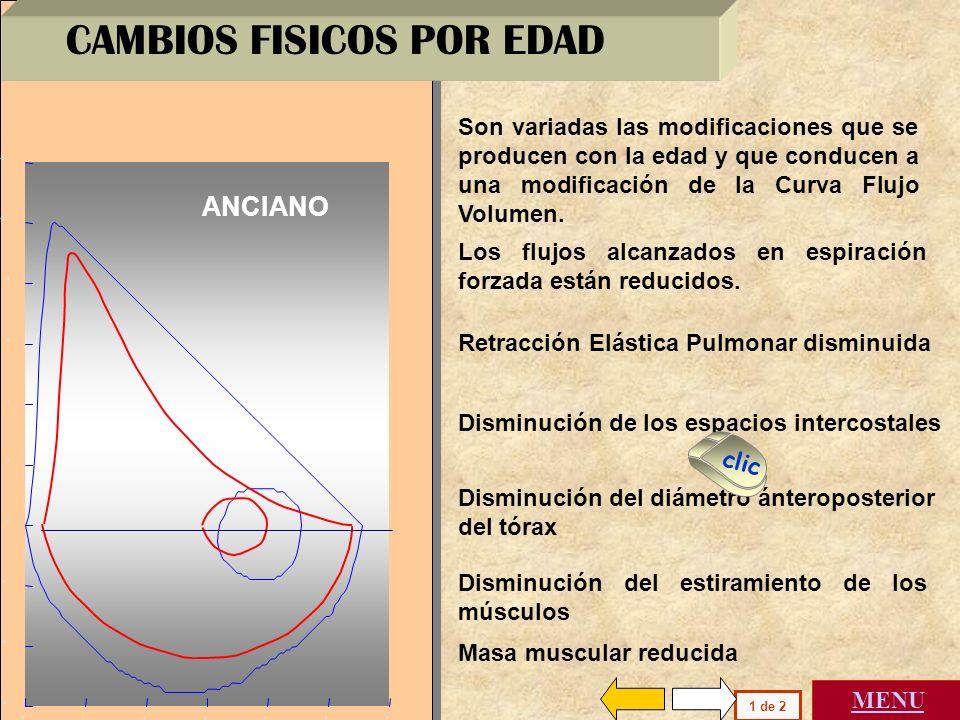 1 12345 6 0 8 0 2 4 6 10 -2 -4 -6 Capacidad Vital ( litros ) A B C D Los flujos máximos en las vías aéreas internas a la red elástica aumentan con aum