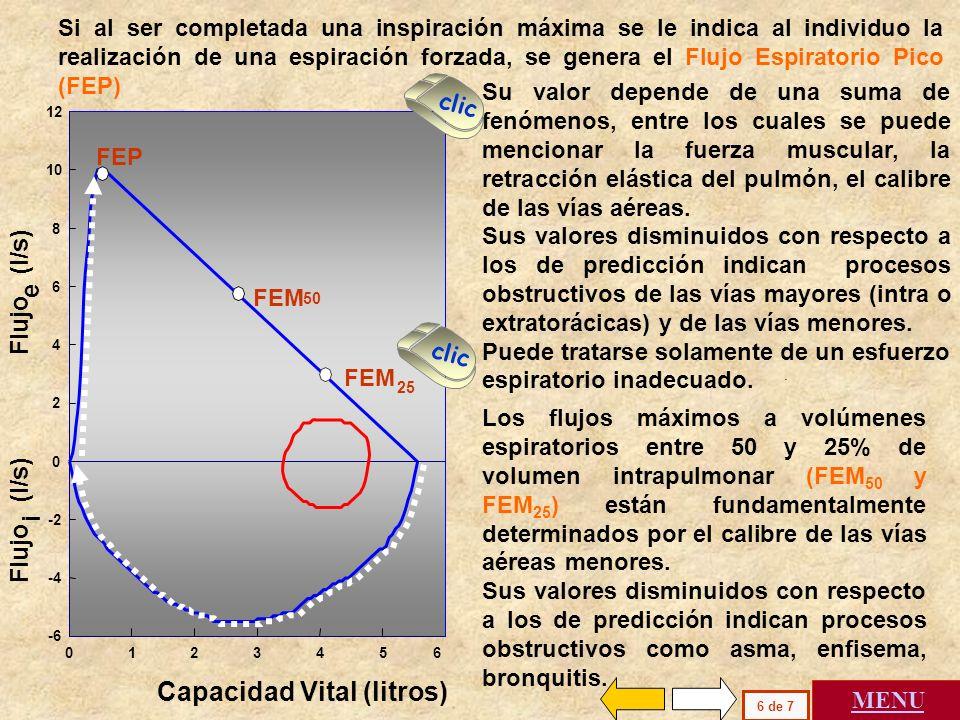 En ordenadas se representa el flujo espiratorio con signo positivo de 0 a 12 l / s en la parte superior del gráfico. Se representan los flujos espirat