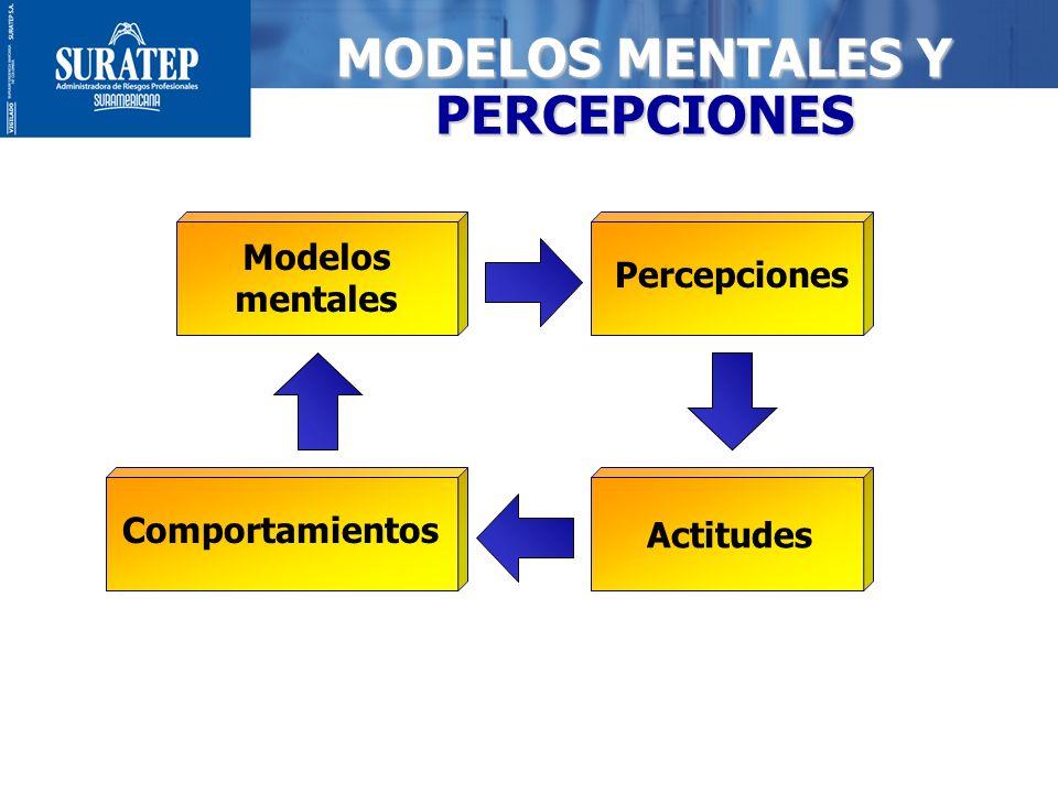 12 MODELOS MENTALES Y PERCEPCIONES Modelos mentales Percepciones Actitudes Comportamientos