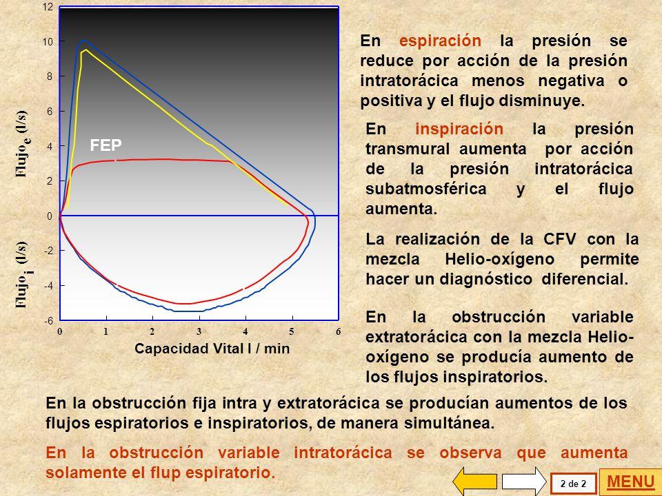 INSPIRACION Resistencia < ESPIRACION Resistencia > Pt > Ppl Pt < Ppl La obstrucción variable intratorácica presenta modificaciones diferentes en los f