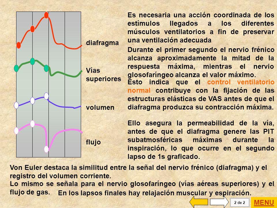 tiempo 1 s Nervio frénico mV Nervio faríngeo mV Volumen corriente cc Flujo cc / s En el año 1983 C.von Euler publica la relación entre los neurogramas