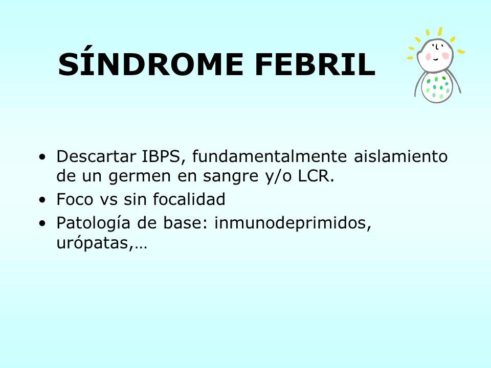 SÍNDROME FEBRIL Descartar IBPS, fundamentalmente aislamiento de un germen en sangre y/o LCR. Foco vs sin focalidad Patología de base: inmunodeprimidos