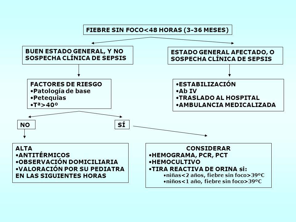 INSTITUTO NACIONAL DE TOXICOLOGÍA CONSULTAS EN 1.999 Sancho M.