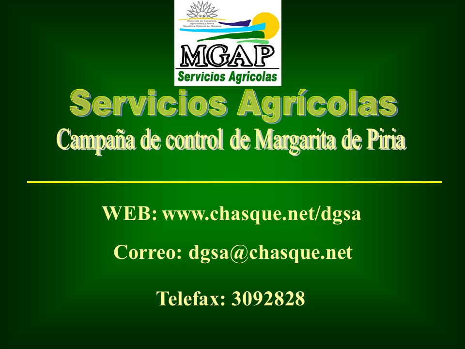 WEB: www.chasque.net/dgsa Correo: dgsa@chasque.net Telefax: 3092828