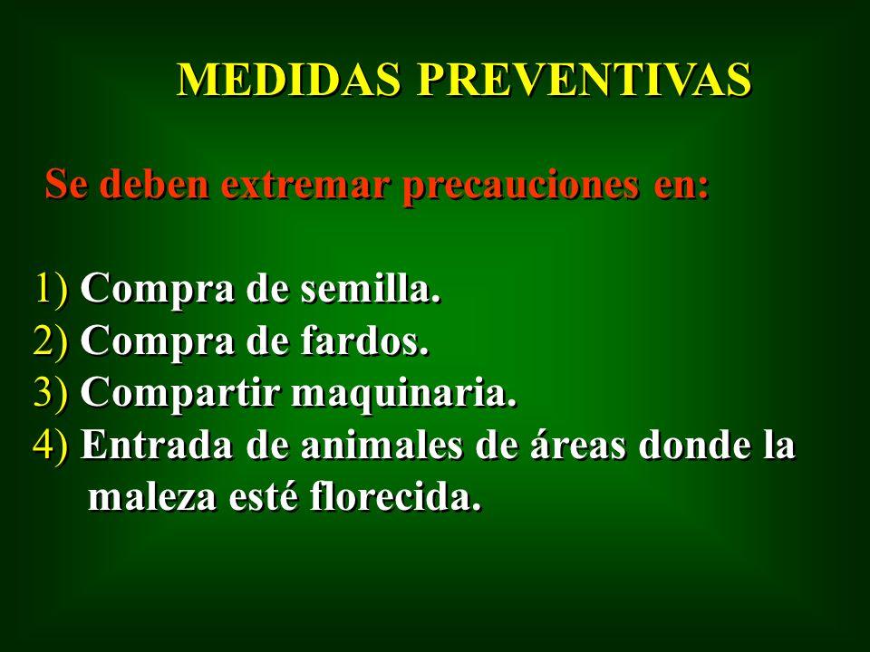 MEDIDAS PREVENTIVAS Se deben extremar precauciones en: 1) Compra de semilla. 2) Compra de fardos. 3) Compartir maquinaria. 4) Entrada de animales de á