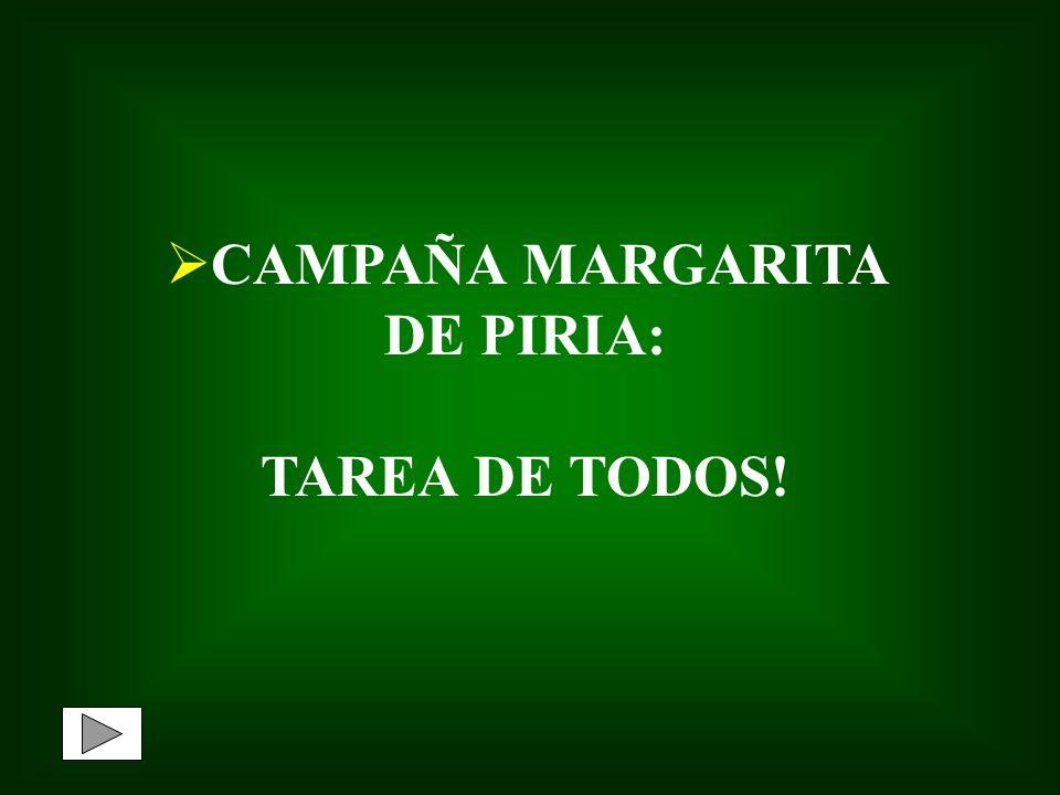 CAMPAÑA MARGARITA DE PIRIA: TAREA DE TODOS!