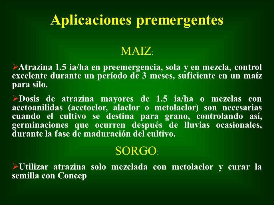 Aplicaciones premergentes MAIZ : Atrazina 1.5 ia/ha en preemergencia, sola y en mezcla, control excelente durante un período de 3 meses, suficiente en