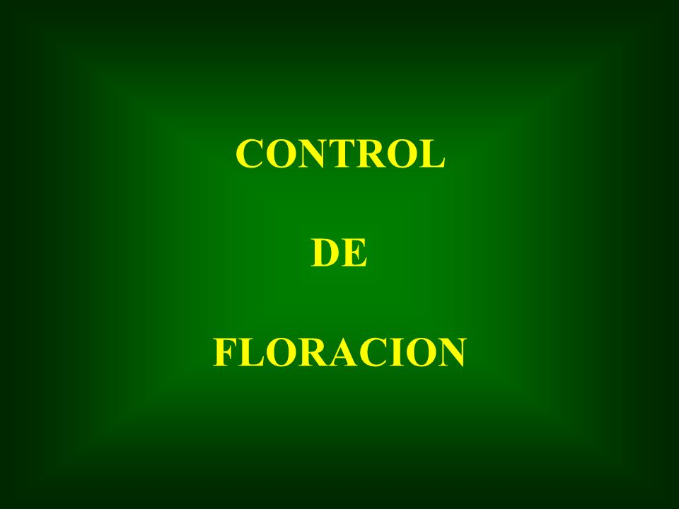 CONTROL DE FLORACION